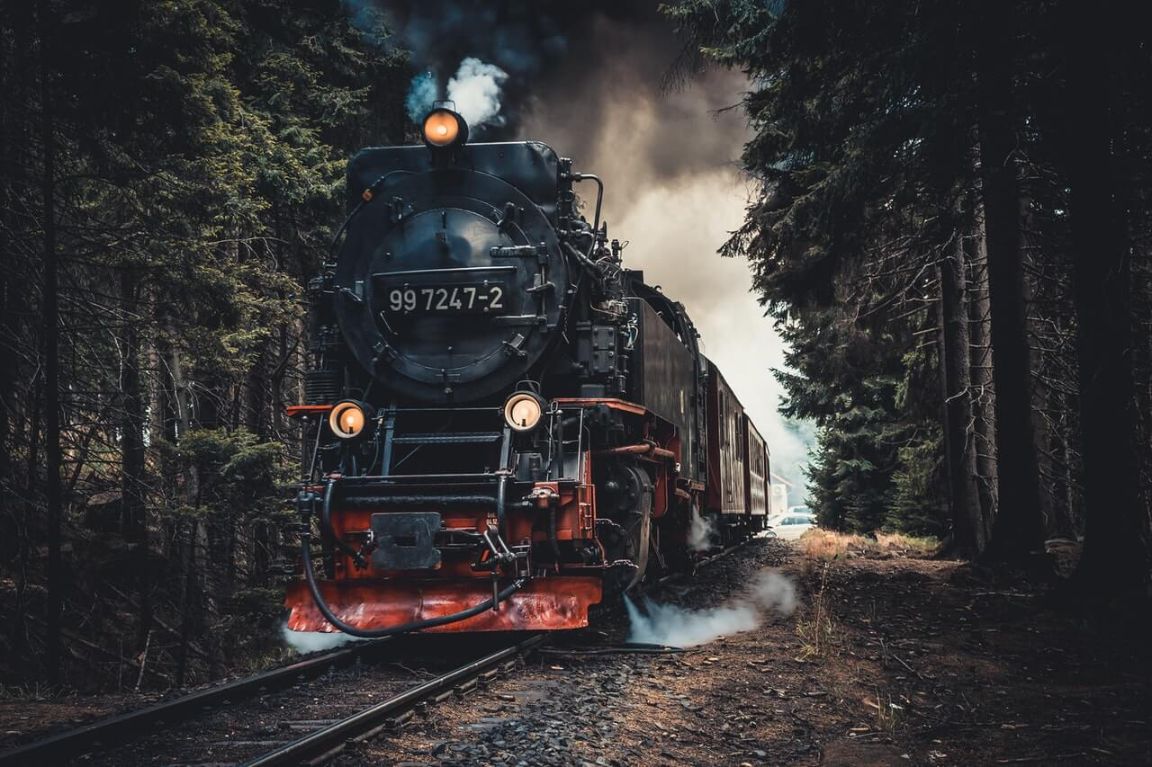 Steam train in the forest.